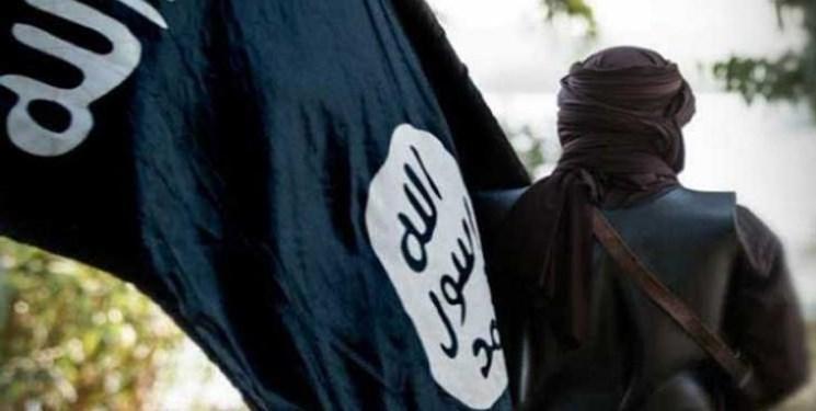 ائتلاف بین المللی مدعی شد دو عضو ارشد داعش را در سوریه کشته است