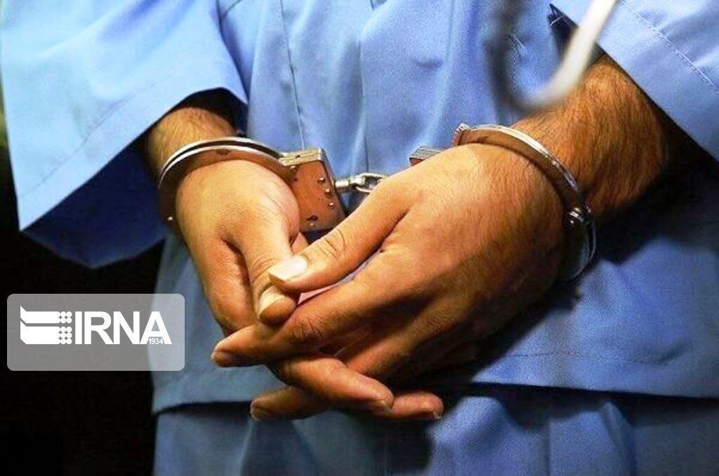 خبرنگاران 10 دزد در شهرستان دشتستان دستگیر شد