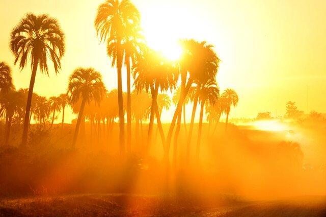 احتمال تعطیلی مجدد خوزستان ، ادامه وقوع دماهای بالای 50 درجه