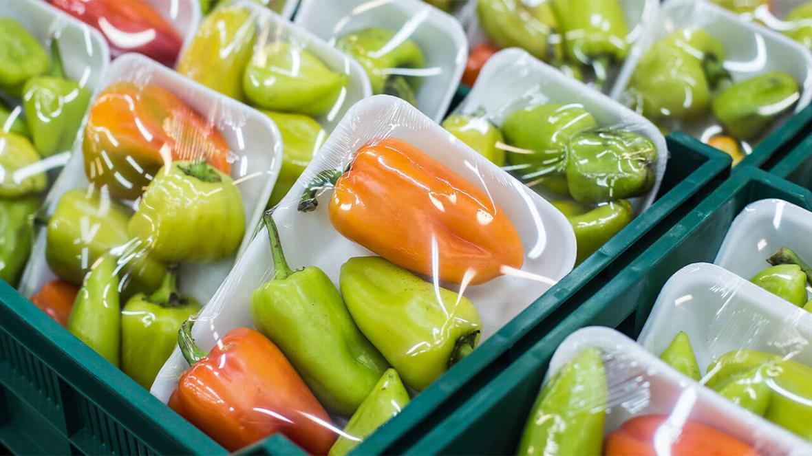 خبرنگاران مدرس کارآفرینی: مصرف محصولات کشاورزی بسته بندی شده در روزهای کرونایی ترویج گردد