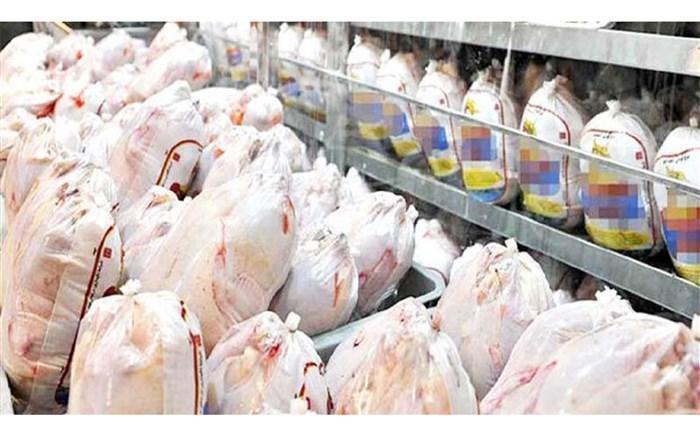 توزیع روزانه مرغ به 950 تن رسید