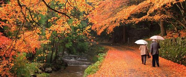 بهترین مناطق برای سفر در پاییز