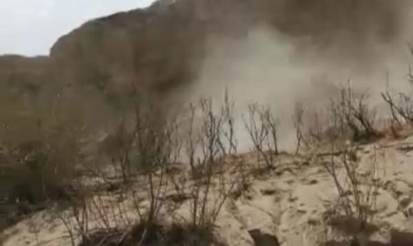 خبرنگاران زلزله 174 راس دام را در روستای شول گناوه تلف کرد