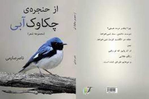 مجموعه شعر از حنجره چکاوک آبی به کوردی ترجمه شد